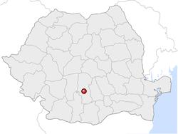 Amplasarea orasului Pitești in cadrul Romaniei