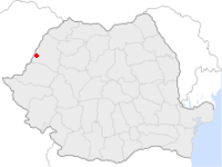 Amplasarea orasului Salonta in cadrul Romaniei