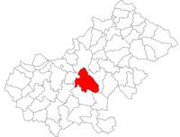 Pozitia orasului Ardud in cadrul judetului Satu Mare