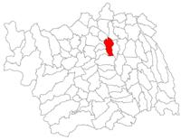 Pozitia orasului Bacău in cadrul judetului Bacău