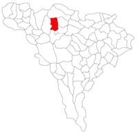 Pozitia orasului Baia de Arieș in cadrul judetului Alba