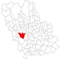 Pozitia orasului Băicoi in cadrul judetului Prahova