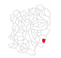 Pozitia orasului Băile Herculane in cadrul judetului Caraș-Severin