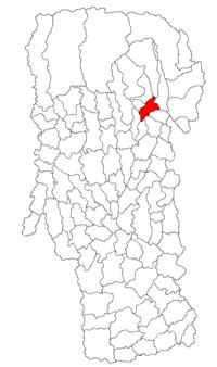 Pozitia orasului Câmpulung in cadrul judetului Argeș