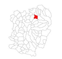 Pozitia orasului Caransebeș in cadrul judetului Caraș-Severin