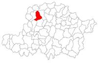 Pozitia orasului Chișineu-Criș in cadrul judetului Arad