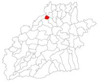 Pozitia orasului Copșa Mică in cadrul judetului Sibiu