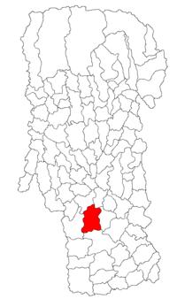 Pozitia orasului Costești in cadrul judetului Argeș