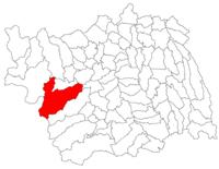 Pozitia orasului Dărmănești in cadrul judetului Bacău