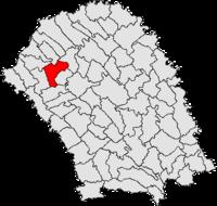 Pozitia orasului Dorohoi in cadrul judetului Botoșani