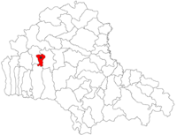 Pozitia orasului Făgăraș in cadrul judetului Brașov