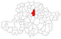Pozitia orasului Ineu in cadrul judetului Arad