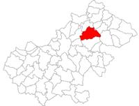 Pozitia orasului Livada in cadrul judetului Satu Mare