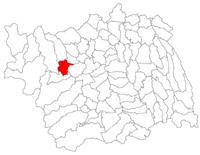 Pozitia orasului Moinești in cadrul judetului Bacău
