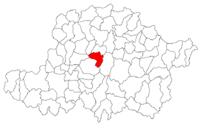 Pozitia orasului Pâncota in cadrul judetului Arad