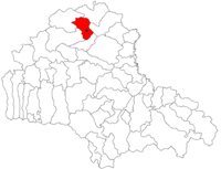 Pozitia orasului Rupea in cadrul judetului Brașov