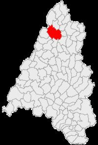 Pozitia orasului Săcueni in cadrul judetului Bihor
