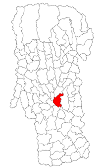 Pozitia orasului Ștefănești, Argeș in cadrul judetului Argeș