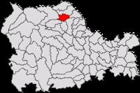 Pozitia orasului Târgu Neamț in cadrul judetului Neamț