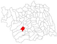 Pozitia orasului Târgu Ocna in cadrul judetului Bacău