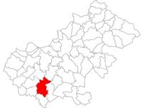 Pozitia orasului Tășnad in cadrul judetului Satu Mare