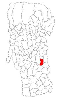 Pozitia orasului Topoloveni in cadrul judetului Argeș