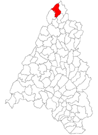 Pozitia orasului Valea lui Mihai in cadrul judetului Bihor