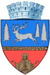 Stema orasului Bacău