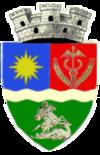 Stema orasului Băilești