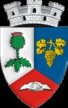 Stema orasului Boldești-Scăeni