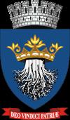 Stema orasului Brașov