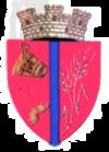 Stema orasului Călan