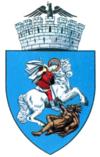 Stema orasului Craiova