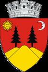 Stema orasului Fălticeni