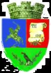 Stema orasului Hațeg