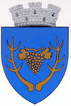 Stema orasului Miercurea Sibiului