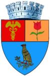 Stema orasului Pitești