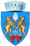 Stema orasului Ploiești