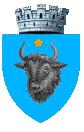 Stema orasului Sighetu Marmației
