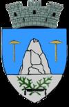 Stema orasului Slănic