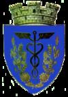 Stema orasului Țăndărei