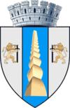 Stema orasului Târgu Jiu