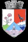 Stema orasului Zărnești